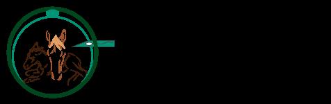II Simposio Lationamericano de Reproducción asistida en equinos 2019