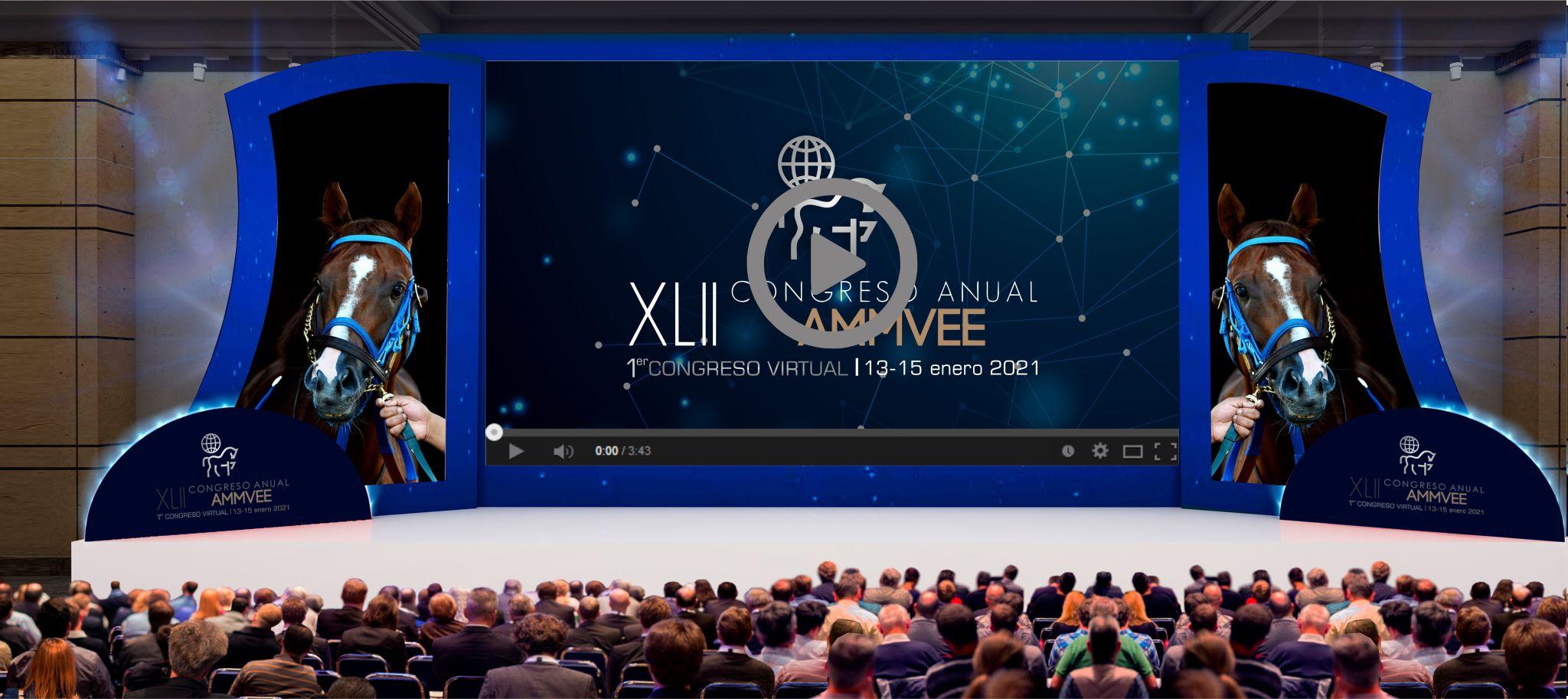 Congreso virtual AMMVEE - Plataforma virtual