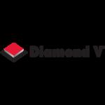 Diamond Patrocinador