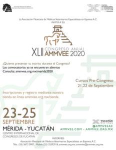 Congreso AMMVEE 2020 poster