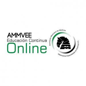 Programa de Educación Continua Online
