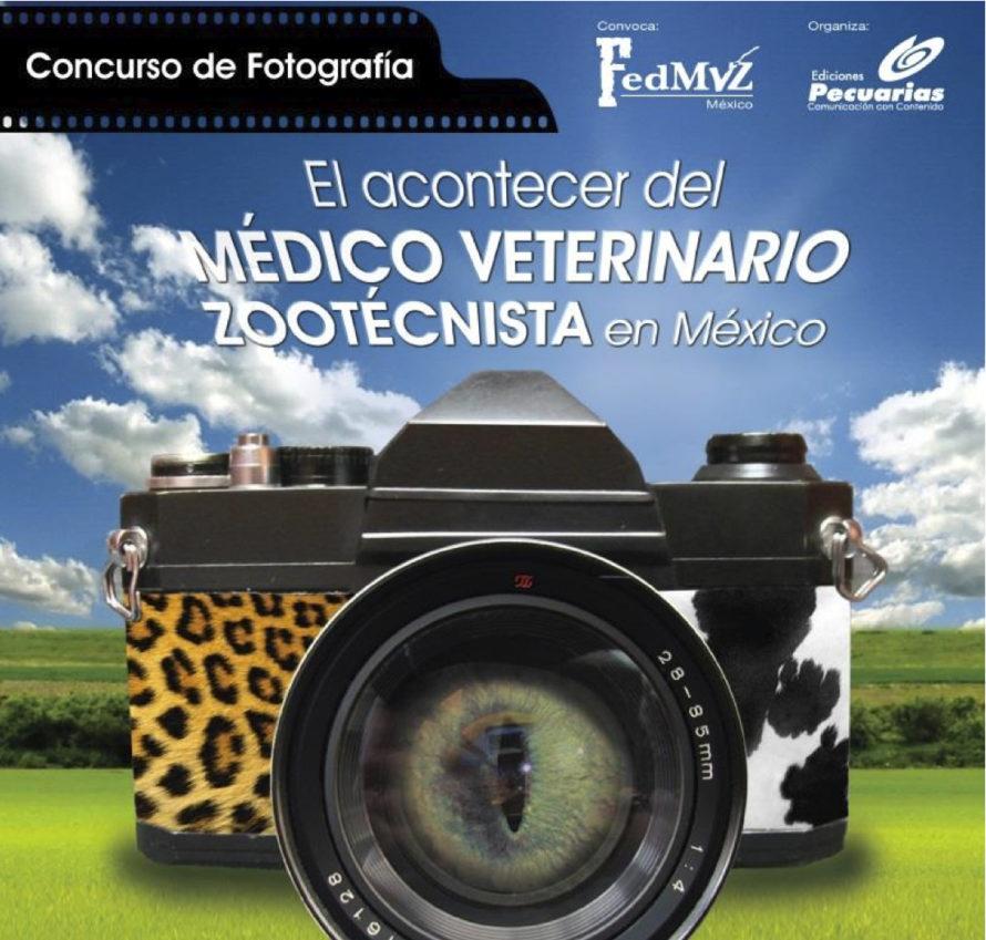 foto-concurso